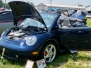2006 Litchfield Bug In