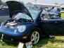 2006 Litchfield Bug In